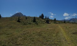 Biketour Firstkogel - kurz vor dem Firstkogel